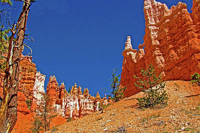 Photograph - Columns Along Queen's Garden Trail In  Bryce National Park, Utah by Ruth Hager