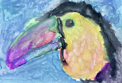 Drawing - Colurful Toucan by Jennifer Phillip