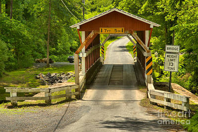 Photograph - Colvin Covered Bridge In The Forest by Adam Jewell
