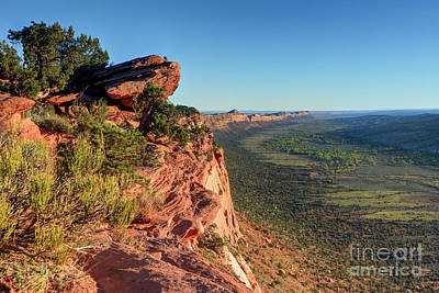 Photograph - Comb Ridge Sunset - Bears Ears National Monument - Utah by Gary Whitton