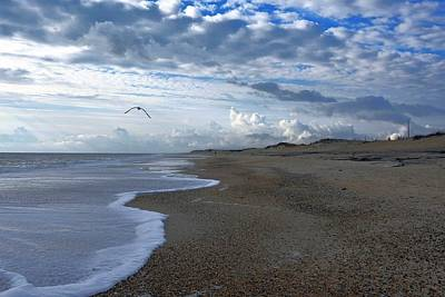 Photograph - Combing The Beach by Kim Bemis