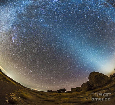 Luminous Tail Photograph - Comet Lovejoy And Zodiacal Light by Alan Dyer