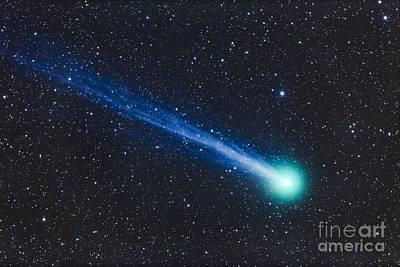 Luminous Tail Photograph - Comet Lovejoy C2014 Q2 by Alan Dyer