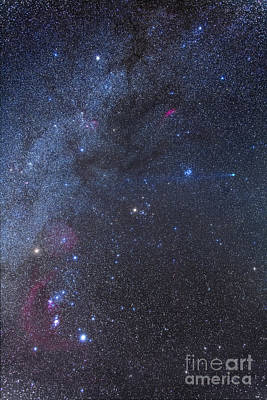 Luminous Tail Photograph - Comet Lovejoy In The Winter Sky by Alan Dyer