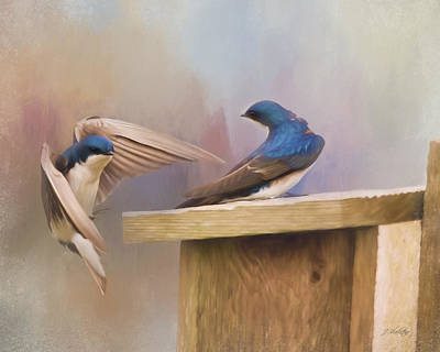 Painting - Coming Home To You - Bird Art by Jordan Blackstone