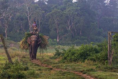 Nepal Photograph - Coming Home by Tomasz Wozniak