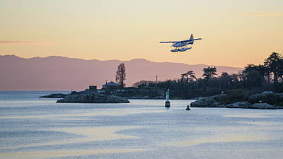 Photograph - Coming In For A Landing by Keith Boone