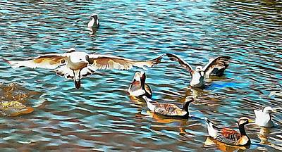 Photograph - Coming In To Land by Dorothy Berry-Lound