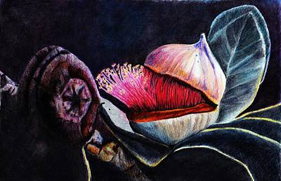 Flower Still Life Mixed Media - Coming Out by Lorraine Kelly