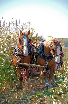 Coming Through The Corn Art Print by Valerie Kirkwood