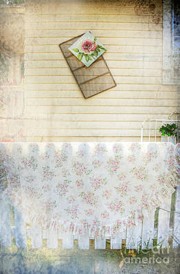 Photograph - Coming Up Roses by Craig J Satterlee