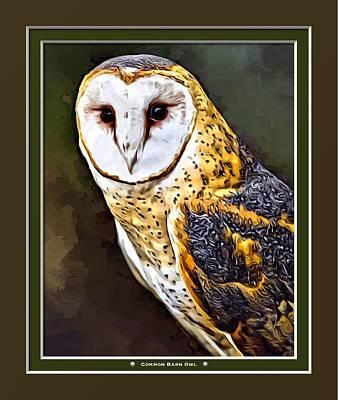 Barnyard Digital Art - Common Barn Owl Print by Scott Wallace