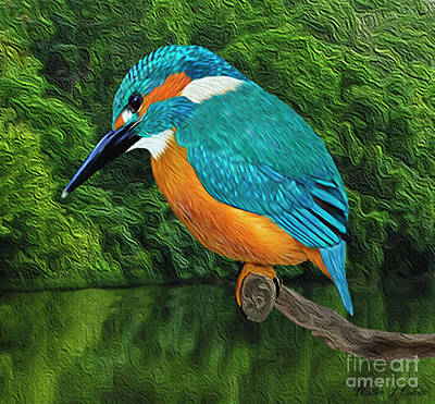 Digital Art - Common Blue Kingfisher by Walter Colvin