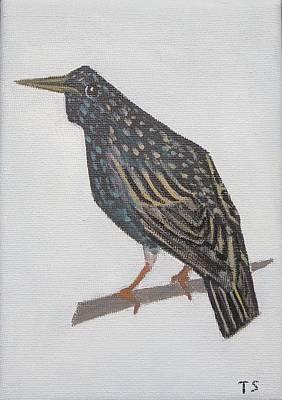 Common Starling Art Print