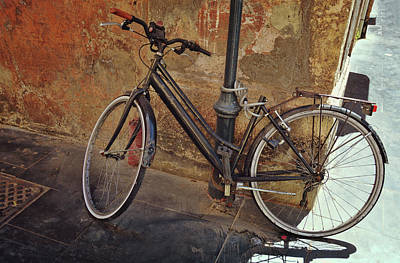 Photograph - Common Transportation by JAMART Photography