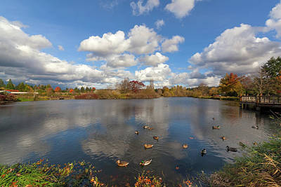 Landscape Photograph - Commonwealth Lake Park In Beaverton Oregon by David Gn