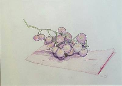 Purple Grapes Drawing - Complimentary Grapes by Kaitlyn Gage