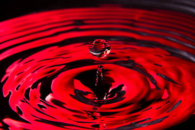 Winter Animals Rights Managed Images - Concentric Ruby Water Drop Royalty-Free Image by SR Green