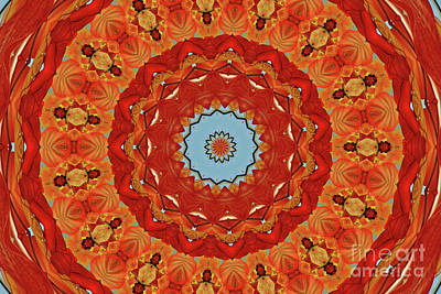 Digital Art - Concentric by Sheila Ping