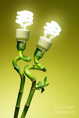 Plants Photograph - Conceptual Lamps by Carlos Caetano