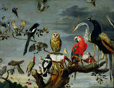 Colored Owl Painting - Concert Of Birds by Frans Snijders