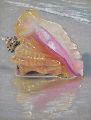 Conch On Beach Art Print by Joan Swanson