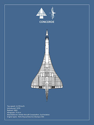 Airways Photograph - Concorde by Mark Rogan