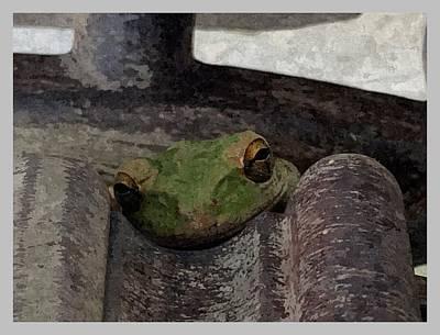 Snug Digital Art - Concrete Frog by Eponas Tribe