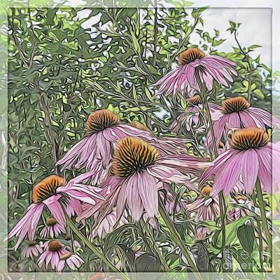 Cone Flowers Art Print by John Kain