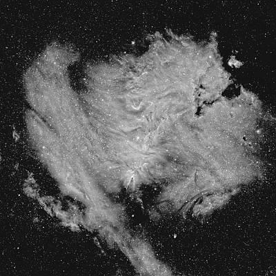 Photograph - Cone Nebula In Ha by Tony Sarra
