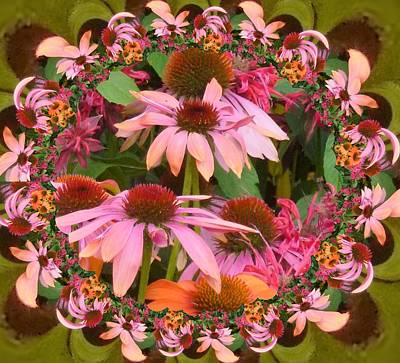 Digital Art - Coneflower 2 by Nancy Pauling