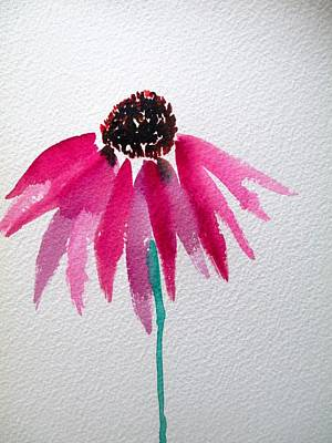 Coneflower Print by Sacha Grossel