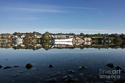 Photograph - Confusing Reflections by Terri Waters