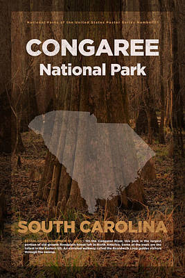 National Park Mixed Media - Congaree National Park In South Carolina Travel Poster Series Of National Parks Number 11 by Design Turnpike