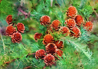 Photograph - Evergreen Cones by Judi Bagwell