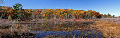 Photograph - Connecticut Fall Foliage by Juergen Roth