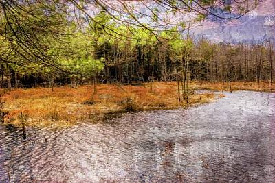 Digital Art - Connecticut Marsh Area by Rusty R Smith