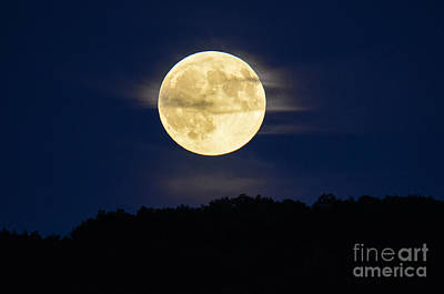 Photograph - Connecticut Supermoon by Amy Porter