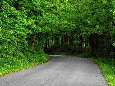 Photograph - Connecticut's Hoyt Road by Raymond Salani III