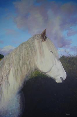 Connemara Pony Art Print by Eamon Doyle