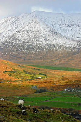 Photograph - Connemara Winter by Pierre Leclerc Photography
