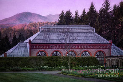 Conservatory At Biltmore Estate Art Print by Doug Sturgess