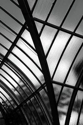 Photograph - Conservatory Glass Bw by Mary Bedy