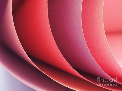 Photograph - Construction Paper by Valerie Morrison