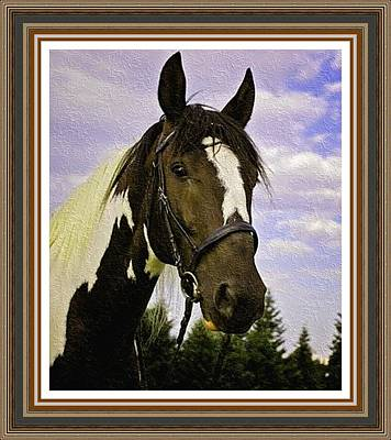 Consulate's Pride P B With Decorative Ornate Printed Frame. Print by Gert J Rheeders