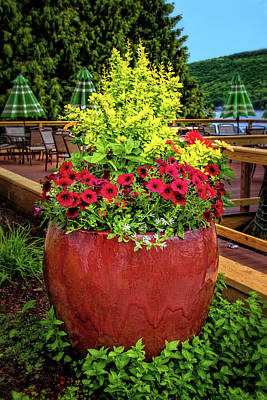 Photograph - Container Garden Along Keuka Lake by Carolyn Derstine