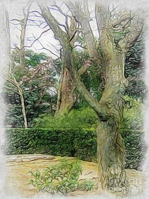 Katsura Wall Art - Drawing - Conte Drawing The Japanese Garden At Katsura Imperial Villa In  by Eiko Tsuchiya