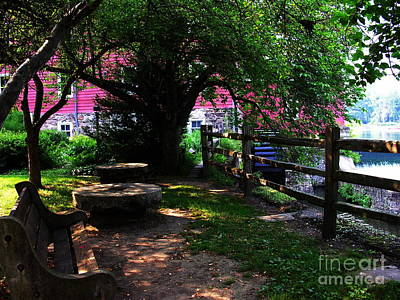 Photograph - Contemplation At Red Mill by Jacqueline M Lewis