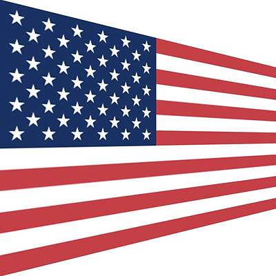 Photograph - Contemporaryusa Flag by Florene Welebny