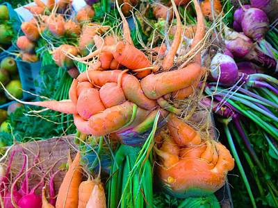 Photograph - Contortionist Carrot by Polly Castor